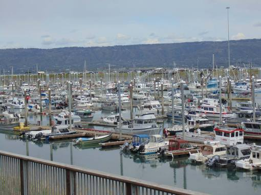 Homer Harbour